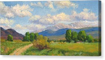 Colorado Summer Canvas Print by Bunny Oliver