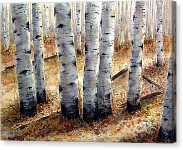 Colorado Trail Canvas Print