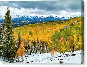Colorado Valley Of Autumn Color Canvas Print by Teri Virbickis