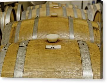 Colorado Wine Barrels Canvas Print by Teri Virbickis