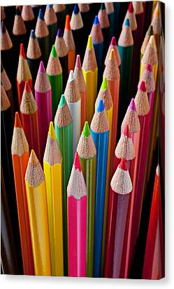 Educational Canvas Print - Colored Pencils by Garry Gay