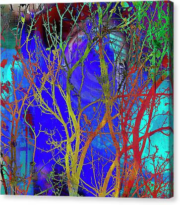 Canvas Print featuring the photograph Colored Tree Branches by Susan Stone