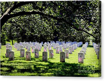 Colored Troops Of The Civil War Canvas Print