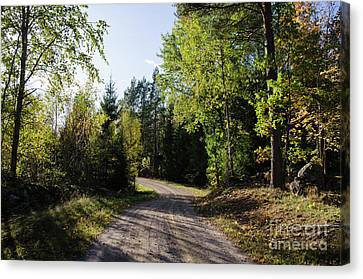 Canvas Print featuring the photograph Colorful Adventure by Kennerth and Birgitta Kullman
