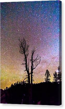 Colorful Celestial Night Portrait Canvas Print by James BO  Insogna