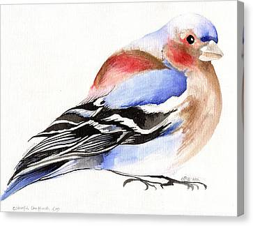 Colorful Chaffinch Canvas Print by Nancy Moniz