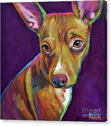 Colorful Chihuahua Canvas Print