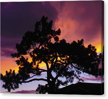 Colorful Colorado Sunset Canvas Print