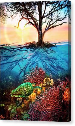 Sea Anenome Canvas Print - Colorful Coral Seas by Debra and Dave Vanderlaan