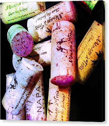 Colorful Corks Canvas Print by Cindy Edwards