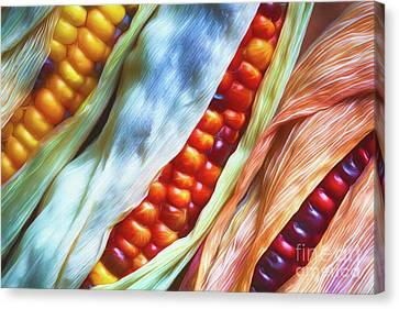Multicolored Canvas Print - Colorful Corn 3 by Veikko Suikkanen