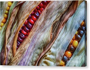 Harmonious Canvas Print - Colorful Corn by Veikko Suikkanen