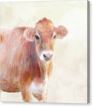 Colorful Cow Canvas Print