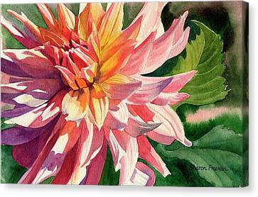 Colorful Dahlia Canvas Print