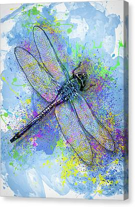 Ant Canvas Print - Colorful Dragonfly by Jack Zulli