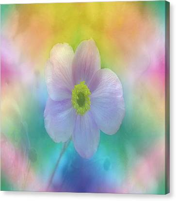 Colorful Dreams Canvas Print by Lena Photo Art