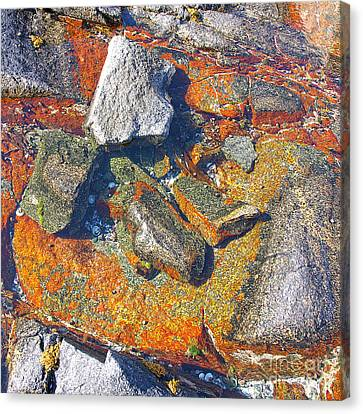 Colorful Earth History Canvas Print by Heiko Koehrer-Wagner