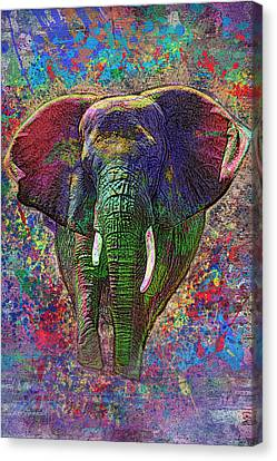 Colorful Elephant Canvas Print by Jack Zulli