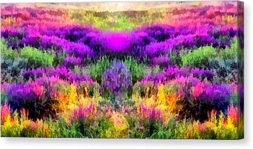 Colorful Field Of A Lavender Canvas Print