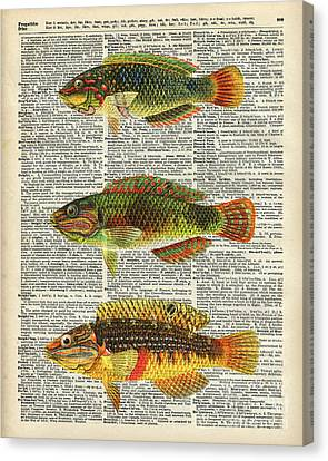 Colorful Fishes Canvas Print by Jacob Kuch