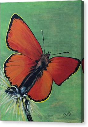 Colorful Flight Canvas Print