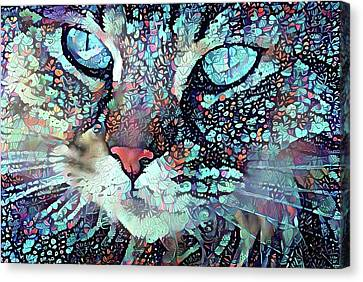 Colorful Flower Cat Art - A Cat Called Blue Canvas Print by Peggy Collins