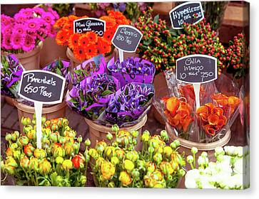 Colorful Flowers Display Canvas Print