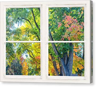 Colorful Forest Rustic Whitewashed Window View Canvas Print