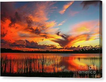 Colorful Fort Pierce Sunset Canvas Print by Tom Claud