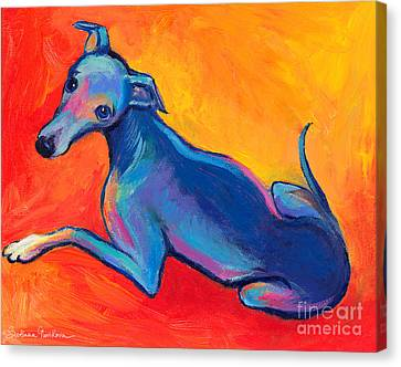 Colorful Greyhound Whippet Dog Painting Canvas Print by Svetlana Novikova