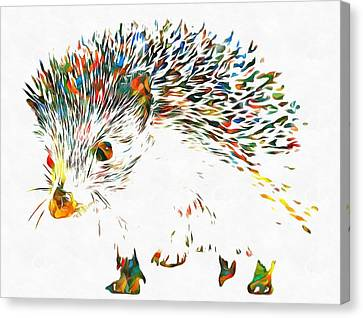 Colorful Hedgehog Canvas Print by Dan Sproul