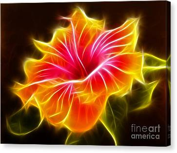 Colorful Hibiscus Flower Canvas Print by Pamela Johnson