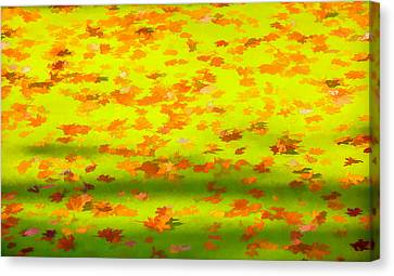 Abstract Water And Fall Leaves Canvas Print - Colorful Leaves On Canal by David Letts