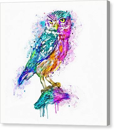 Contemporary Canvas Print - Colorful Owl by Marian Voicu