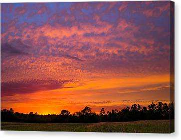Colorful Palette In The Sky Canvas Print by Shelby Young