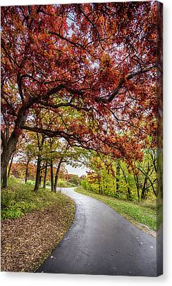 Colorful Path Canvas Print by Christopher Broste