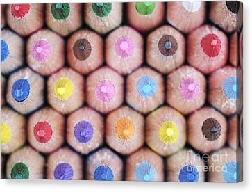 Colorful Pencils 2 Canvas Print by Neil Overy