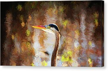 Colorful Portrait Of Great Blue Canvas Print by Scott Pellegrin