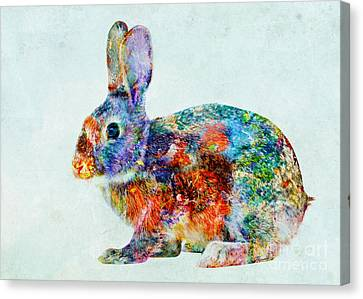 Colorful Rabbit Art Canvas Print by Olga Hamilton