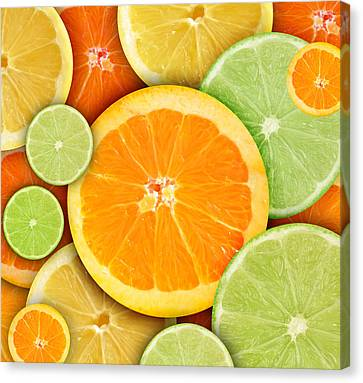 Colorful Round Citrius Fruit Background Canvas Print by Angela Waye
