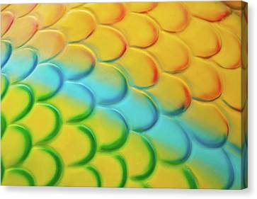 Colorful Scales Canvas Print by Adam Romanowicz