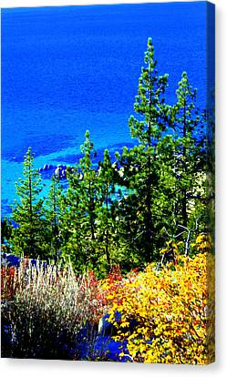 Canvas Print featuring the photograph Colorful Shoreline by Lynn Bawden