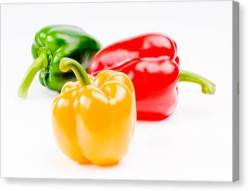 Colorful Sweet Peppers Canvas Print