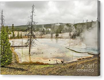 Canvas Print featuring the photograph Colorful Thermal Pool by Sue Smith