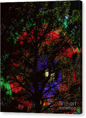 Colorful Tree Canvas Print by James BO  Insogna