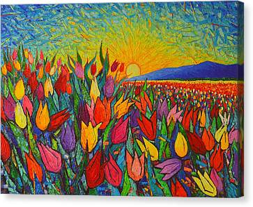 Colorful Tulips Field Sunrise - Abstract Impressionist Palette Knife Painting By Ana Maria Edulescu Canvas Print by Ana Maria Edulescu