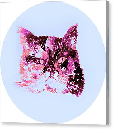 Colorful Watercolor Of Cat Canvas Print by Oana Unciuleanu