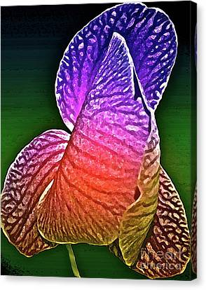 Coloring And Imagining Canvas Print by Gwyn Newcombe