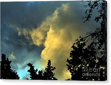 Clayton Canvas Print - Coloring Clouds by Clayton Bruster