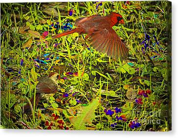 Canvas Print - Coloring Nature by Kim Pate